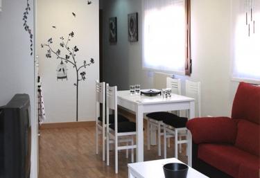 Apartamento Miralrío - Milagro, Navarre