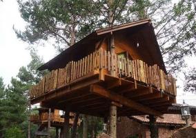 Casa del Árbol Avet