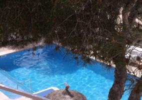 Apartamento en Cala d Or - Cala D'or, Mallorca