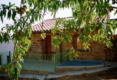 Els Masets - Sarratella, Castellon