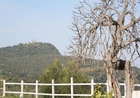 Casa rural El Molinillo - Prado Del Rey, Cadiz