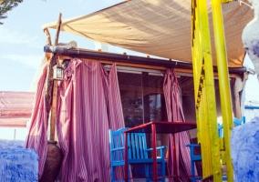 Casa Aloe Vera- Pájaros