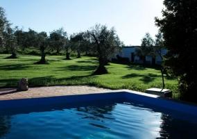 Casa rural Huerta del Pirata - Fuente De Cantos, Badajoz