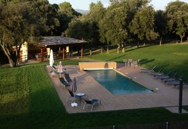 The pool and hammocks