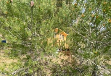 La Cabaña de la Montaña - Fontscaldes, Tarragona