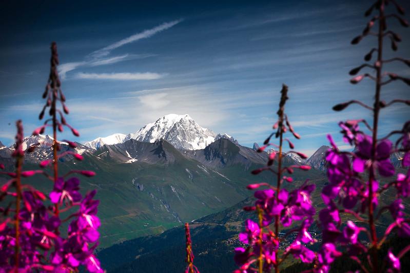 Nature in Rhône - Alpes