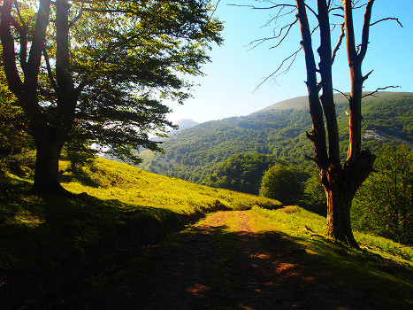 Nature in Basque Country