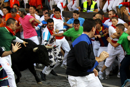 Festivities in Navarre