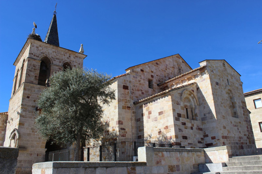 What to do in Zamora
