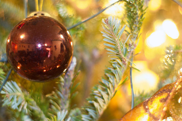 Rural properties for For Christmas