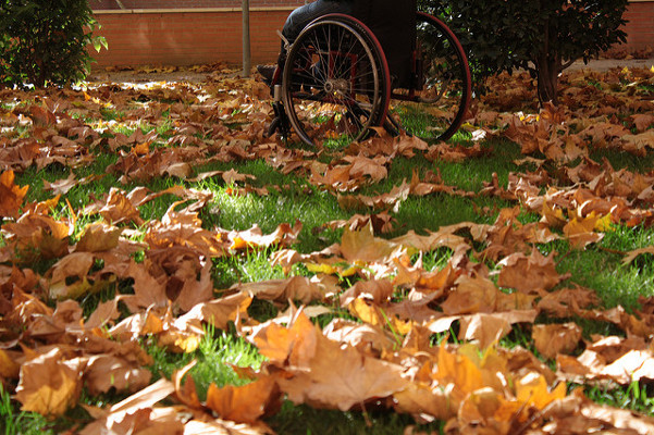 Rural properties adapted with Disabled